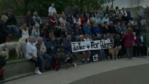 Rally held for Buttons the therapy dog