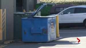Surveillance video shows couple throwing dead dog into dumpster