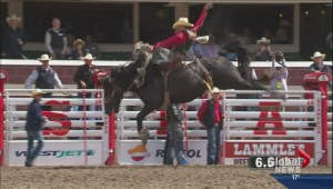 Calgary Stampede Rodeo Results Day 3