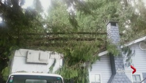 Family homeless after windstorm