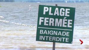 Cap Saint-Jacques beach closed