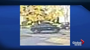 Toronto police search for driver in alleged hit-and-run incident