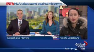 New Alberta NDP member Sandra Jansen urges MLAs to fight harassment