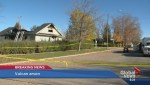 House fire in Vulcan was deliberately set