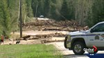 Watchdog report finds forest practices were problems before Cooke Creek slide