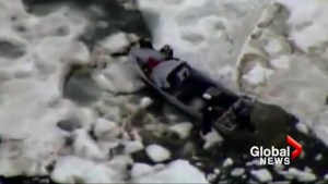 U.S. Coast Guard rescues Alaskan walrus hunters stranded on ice drift