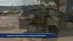 Province cracks down on distracted driving