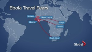 Fallout from Ebola crisis cripples the African tourism industry