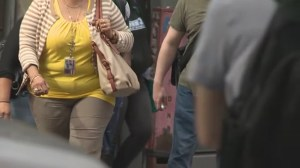 Who you marry is more important than genetics, upbringing in determining obesity risk: study