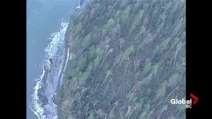Aerials of Stanley Park following devastating 2006 wind storm