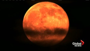'Strawberry' moon lights up summer solstice for 1st time in 49 years