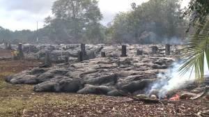 Raw Video: Lava inches close to Hawaiian village