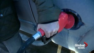 Low fuel prices have mixed benefits for Calgary businesses