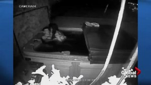 Trespassers caught on security camera having sex in Kelowna homeowner's hot tub