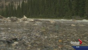 11-year-old Calgary boy missing after falling into river in Yoho National Park