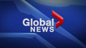 Global News at 5 Edmonton: Dec. 1