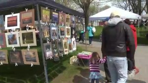 Uptown Saint John farmers market highlights diversity