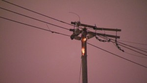 Messy weather causes power outages across the GTA