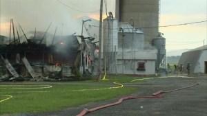 Dairy farm fire in Montérégie: 100 cows dead