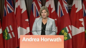 Ontario NDP to fight privatization, 'fire sale' of public assets