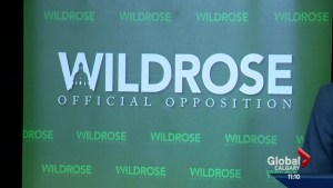 New leader for Wildrose party in June