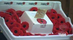 Anti-theft Poppy donation boxes unveiled