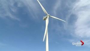 Wind farm future