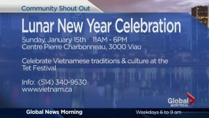 Community Events: Tet Festival