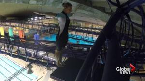 Montreal woman hopes to get extreme high diving into the Olympics