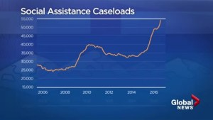University of Calgary report shows Albertans on social assistance skyrocketing