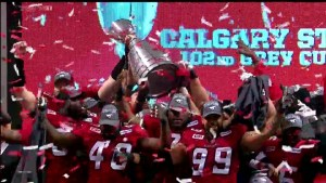 Stamps set to open season against Grey Cup foes the Hamilton Tiger-Cats