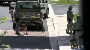 Lockdown at Joint Base Andrews a false alarm