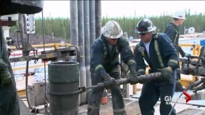 Alberta government contemplating drastic measures after oil prices collapsed