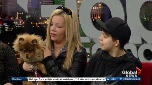 Children's Wish Foundation: Sierra, 15, has spina bifida and was gifted her dog