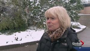 Zoo closed due to Calgary snow
