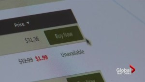 Buying domain names a useful political tool