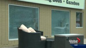 Windows of several south Edmonton businesses smashed