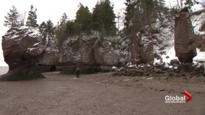 New Brunswick's Hopewell Rocks site in good shape after 2017 winter erosion