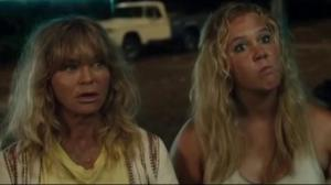 Movie reviews: Snatched & Bon Cop, Bad Cop 2