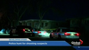 Calgary police search for suspect after teen shot in Huntington Hills