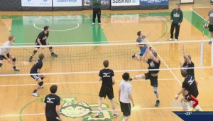 Huskies embrace 'underdog' role at men's volleyball championship