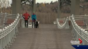 Edmonton's new Terwillegar Park Footbridge