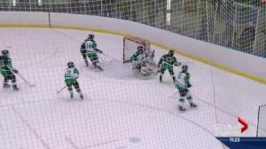 Puck drops on 53rd edition of Quikcard Minor Hockey Week