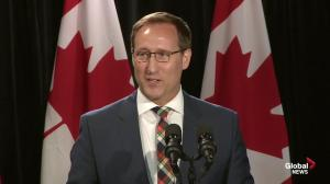 Peter MacKay says he is ready to focus marriage and family