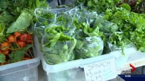 Popularity of Saskatoon Farmers' Market creating a few growing pains
