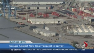 Groups against new Surrey coal terminal