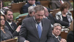 MacKay denies ethnic, environmental groups will be targets of Bill C-51