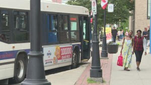 City of Fredericton working to make transit fully accessible by 2028