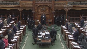 Queen's Park holds moment of silence for victims of MH17