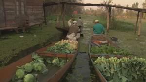 Kashmir's floating vegetable market reopens year after destructive flood